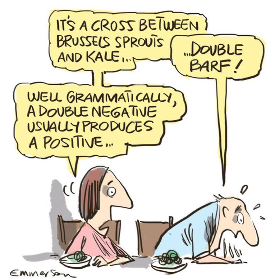 Cartoon by Rod Emmerson, NZ Herald, 5/8/2017